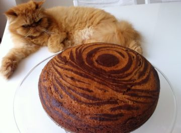 עוגת שוקולד בחושה – עוגת זברה