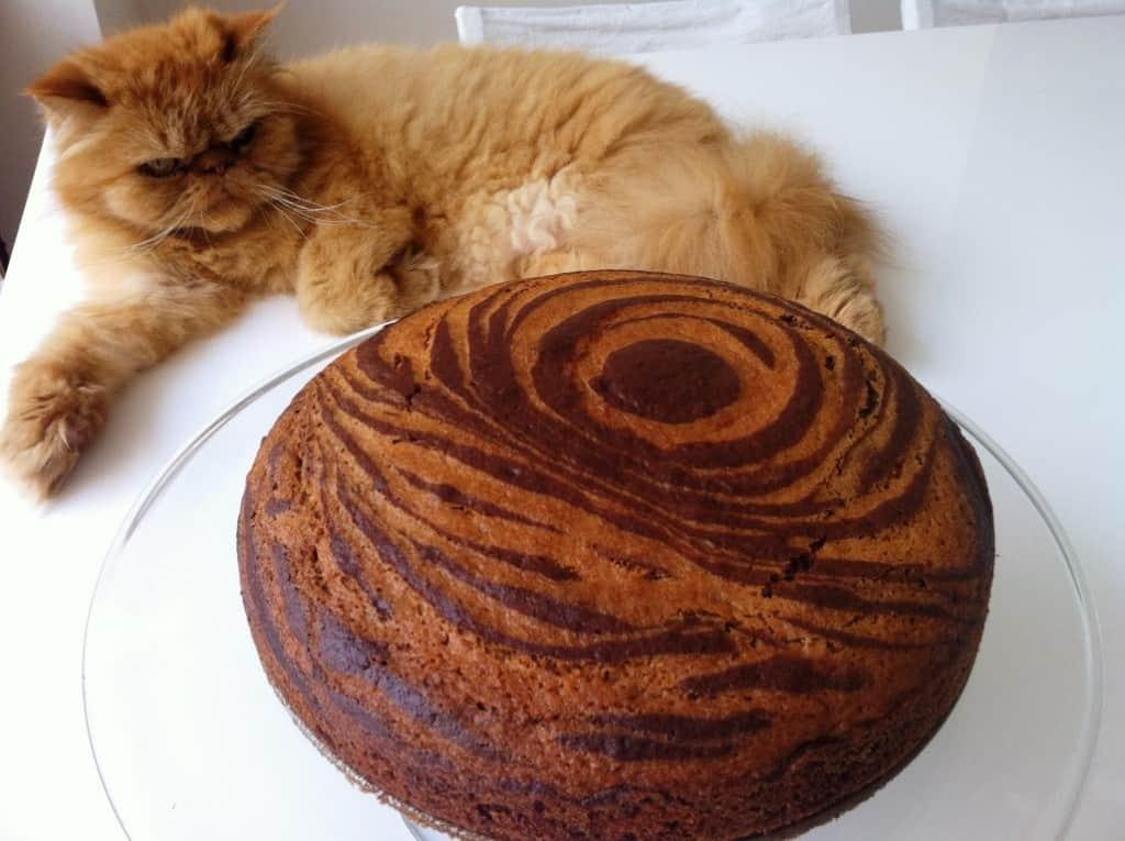 עוגה-בחושה-עוגת-זברה