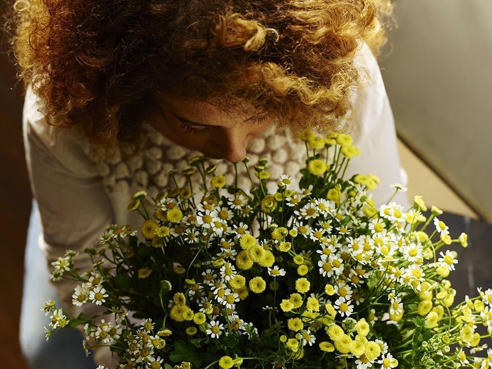 רותם פרחים